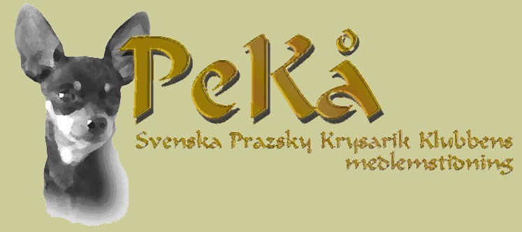 PeKå – medlemstidningen